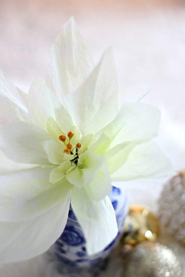 Готовый цветок молочая красивейшего своими руками из гофрированной или крепированной бумаги