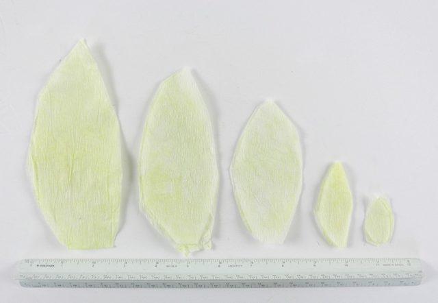 Вырежьте из белой креп-бумаги 5 остроконечных листочков разного размера: 2,5 см, 5 см, 7,6 см, 10,1 см и 12,7 см