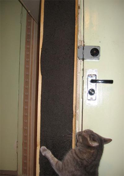 Как смастерить для кота столбик для точения когтей?