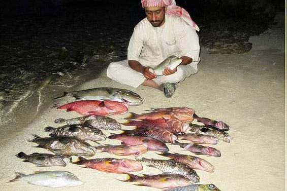 Как рыбачат в Саудовской Аравии