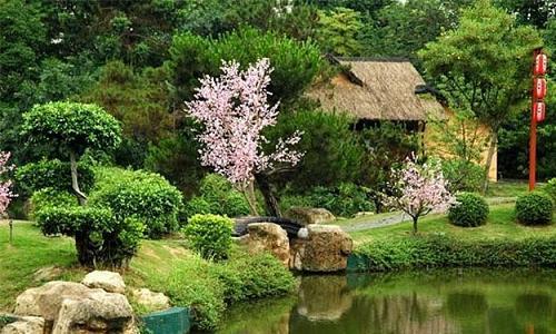 Как быстро превратить ваш сад в неповторимый райский уголок в английском стиле