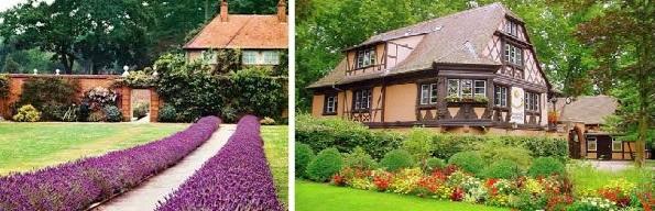 Как посадить овощи и цветы возле дома?
