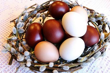 Как красить яйца натуральными красителями. Часть 1.