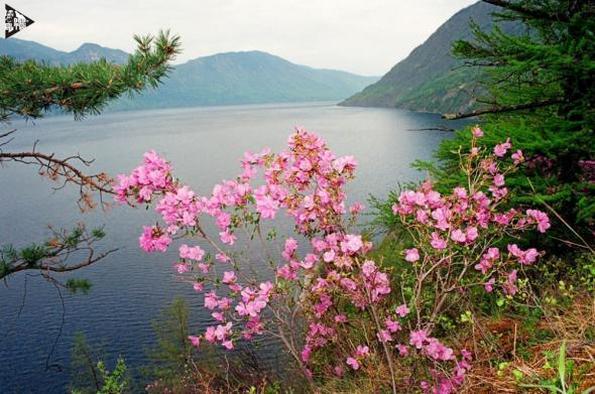 Как увидеть Каракольские озера. Горный Алтай. Часть 2