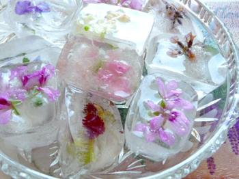 Как сделать декоративный цветочный лед для напитков и коктейлей