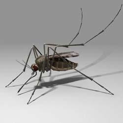 Как выбрать детские средства от комаров?