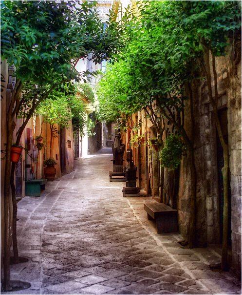 Италия Орвието виды зелень