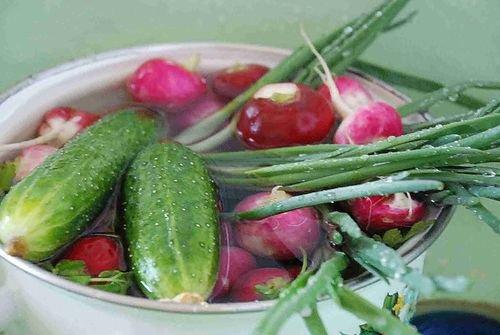Как удалить нитраты в ранних урожаях овощей?