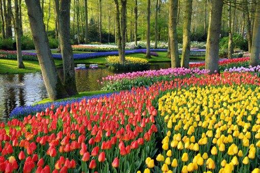 Как выглядят самые красивые парки мира