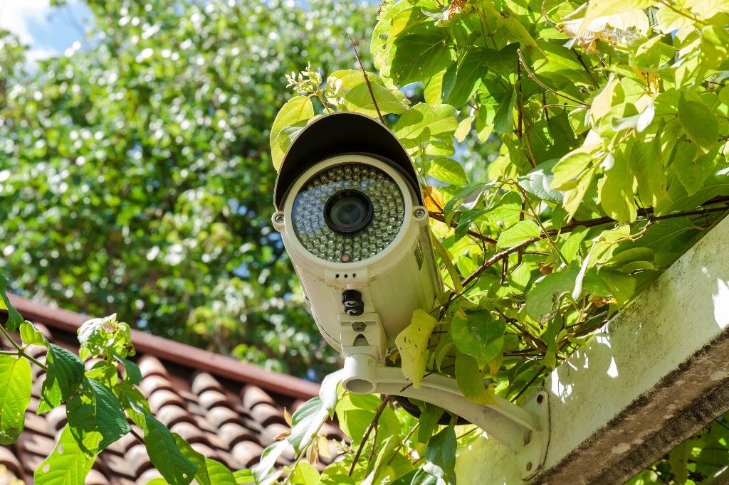 Как организовать видеонаблюдение на даче?