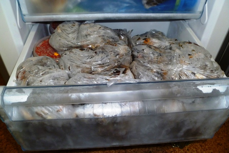 Как правильно и как долго можно хранить рыбу в холодильнике