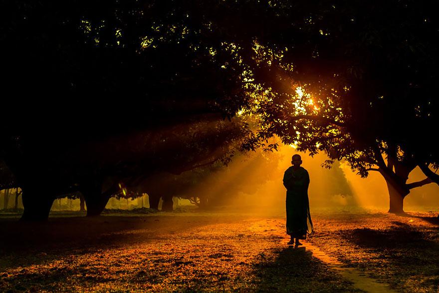 Индусский монах туманным зимним утром гуляет в саду манго в Динаджпуре