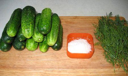 подготовка к засолке огурцов: на столе соль, укроп, огруцы горкой