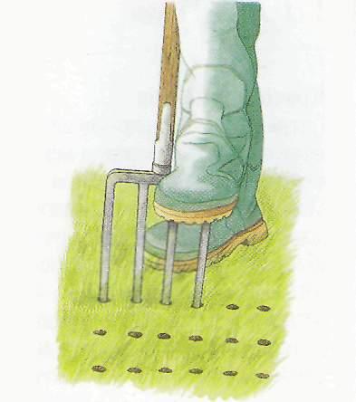 Прокалывание газона