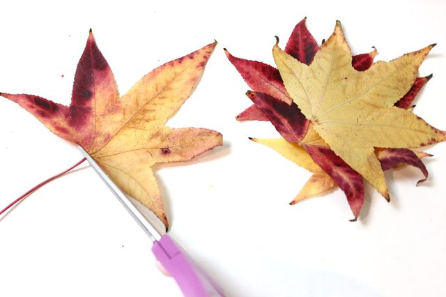 Как сделать украшение для стола из осенних листьев?