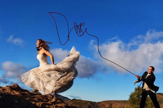Свадебные снимки-лауреаты фотонаград 2014 г.: ключевой момент, поимка невесты на лассо