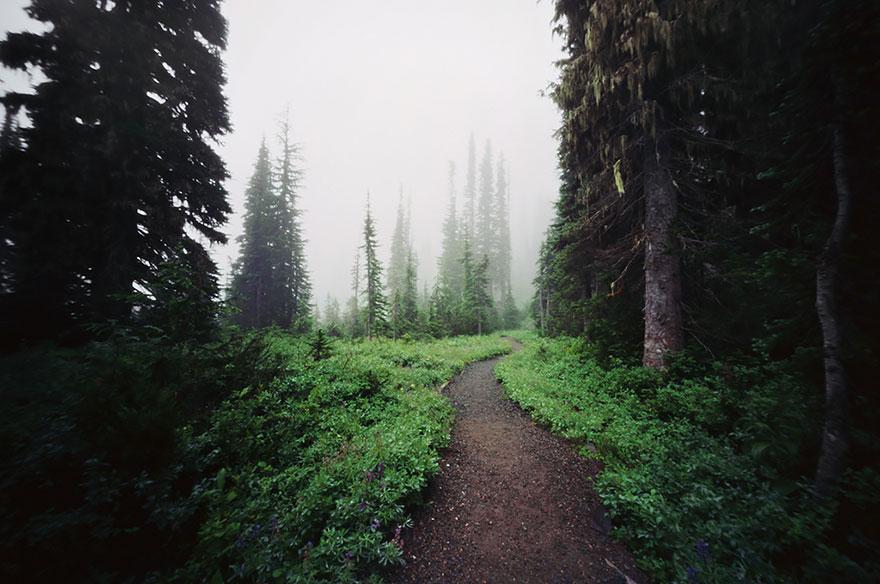 Стратовулкан Маунт-Рейнер (Mount Rainier): Вашингтон, США, автор - Danielle Hughson