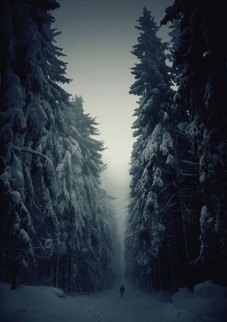 Дорога в зимнем лесу, Чешская республика, автор - Jan Machata