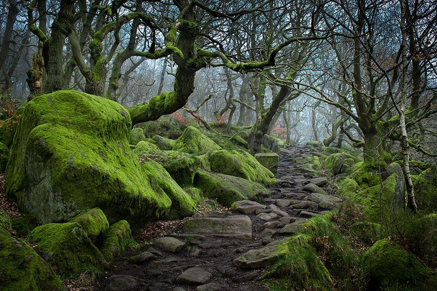 Ущелье Падли (Padley Gorge): Скалистый край (Peak District), Великобритания, автор - James Mills