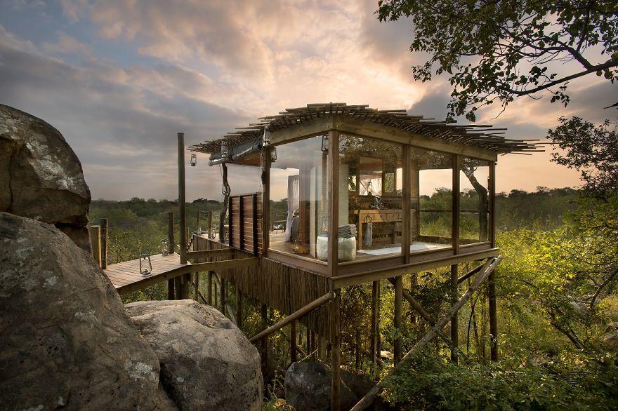 Дом-хижина на дереве с обзором в 360 градусов «Kingston Treehouse», Львиные пески (Lion Sands), Южная Африка