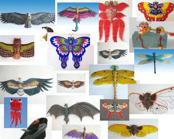 Большинство нынешних воздушных змеев в Китае делается вручную, и их можно создать на заказ