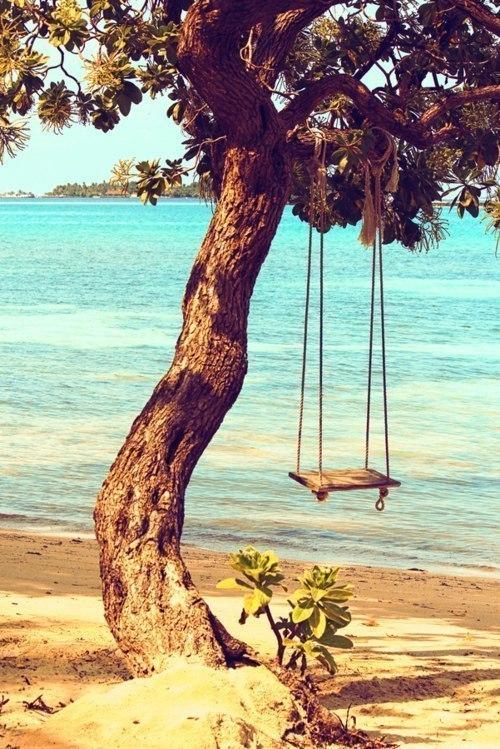 качели на дереве у озера воды
