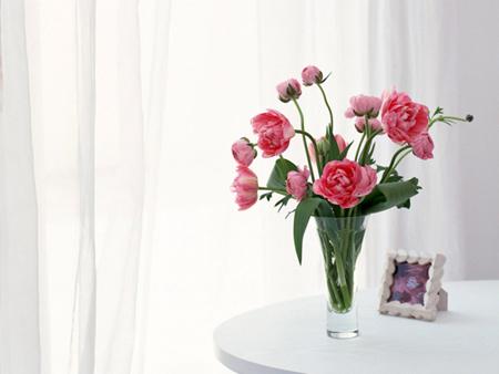 Расставьте в комнатах свежие цветы