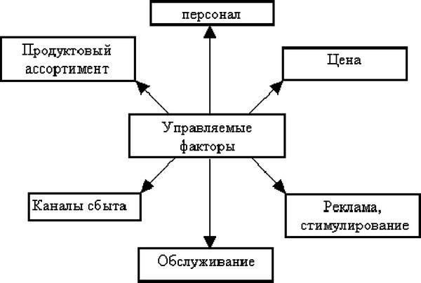 Описание производства и схема маркетинга