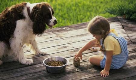 попросите вашего ребенка положить корм в миску и поставить миску с кормом на полагающееся ей место