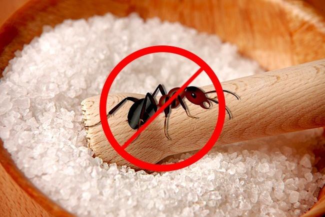 Как использовать соль необычным способом?