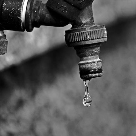 Как дождевая вода помогает огородникам: водопроводная vs дождевая вода