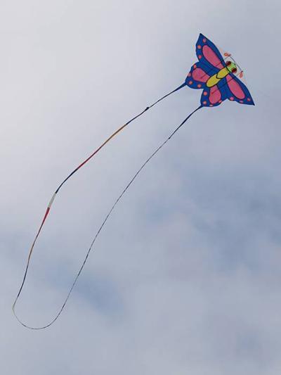 Привяжите крепкую веревку к центру змея и дожидайтесь хорошего ветра, чтобы запустить ваше творение