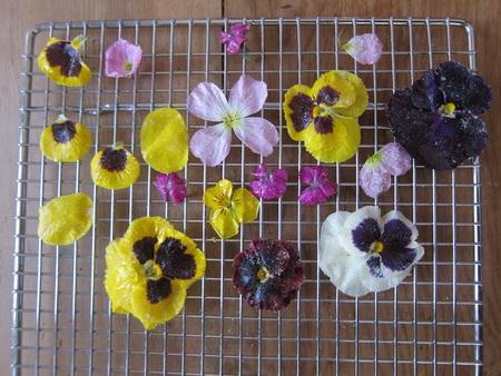 Как правильно использовать живые цветы в выпечке?