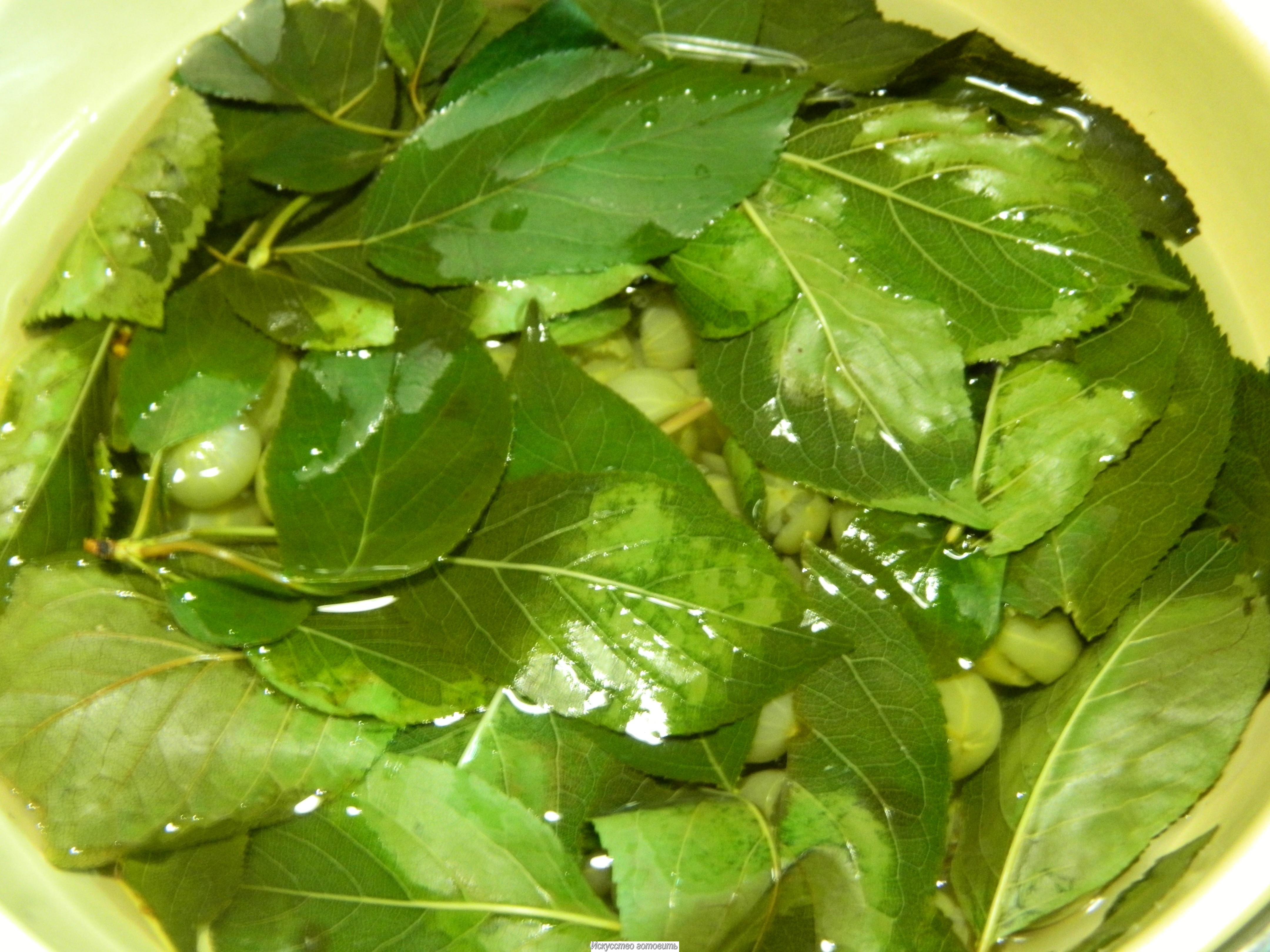 ягоды крыжовника замоченные в тазе  листьями