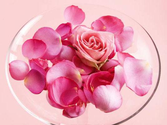 роза и лепестки в прозрачной пиале розовая вода