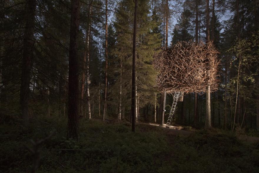 Номер-птичье гнездо отеля «Treehotel», Харадс, Швеция