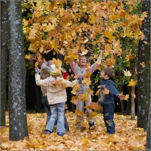 Как занять детей во время осенних каникул
