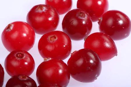 Просушите свежие ягоды клюквы на поддоне