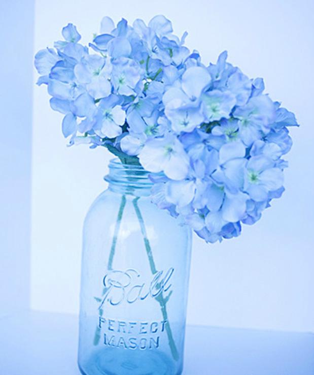 цветы в банке, съемка на автоматическом режиме Fluorescent