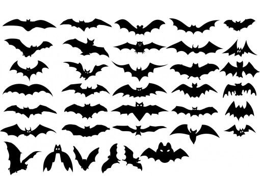 Контуры разных летучих мышей - шаблон