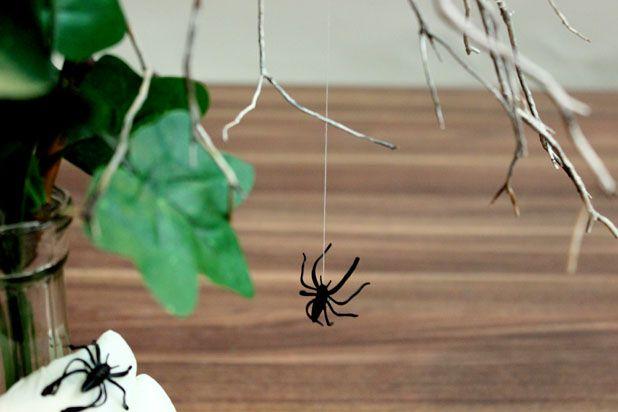 К веточке в вазе привяжите нитку и посадите на нее паука