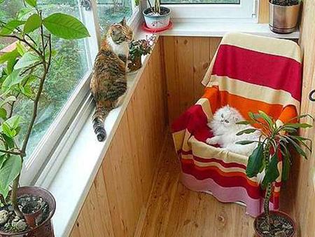 Вам обязательно нужно устроить у себя на балконе маленький уголок для отдыха
