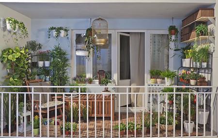 Обязательно нужно озеленить балкон