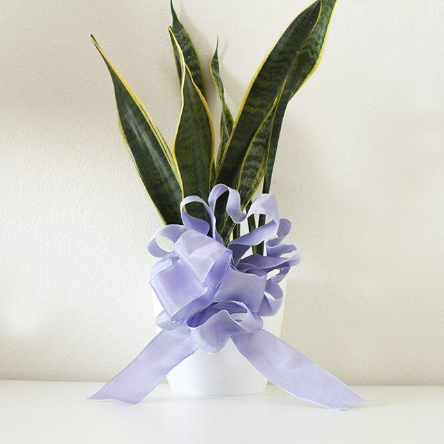 Бант-цветок для букетов, цветов в горшках и других подарков