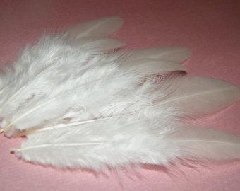длинные белые перья