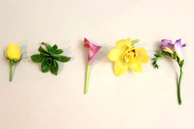 Выбор цветов для бутоньерок