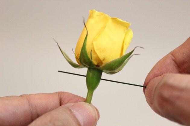 Проволоку длиной около 10-11 см вставьте в стебель, протыкая его поперек, прямо под головкой цветка