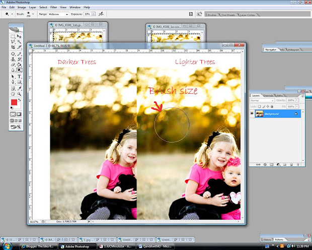 осветляем в Фотошоп отдельный участок снимка с деревьями