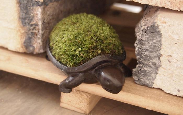 Разнообразные фигурные японские кашпо для мха. Автор - Aoki Yuriko. Мох сфагнум – естественный увлажнитель воздуха.