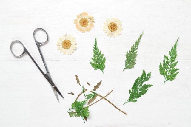 Отрезаем цветы и листочки нужной формы от стеблей, а также удаляем любые другие слишком объемные части